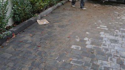 cheap garden waste collection croydon