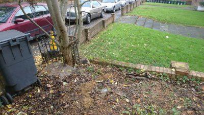 cheap garden waste removal croydon
